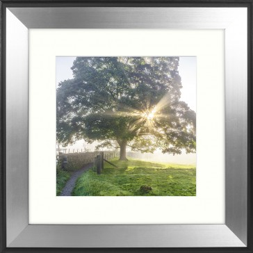 Morning Dawn 2 Framed Print by Mike Shepherd
