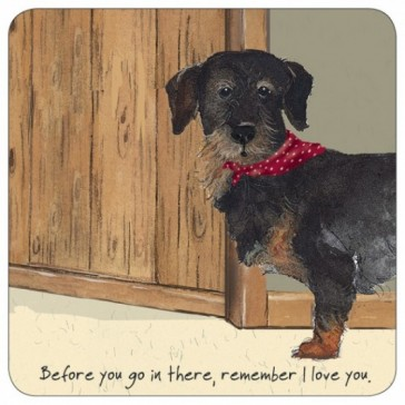The Little Dog Dash Coaster