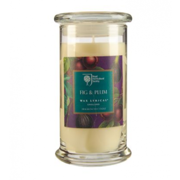 Fig & Plum Large Candle Jar by Wax Lyrical