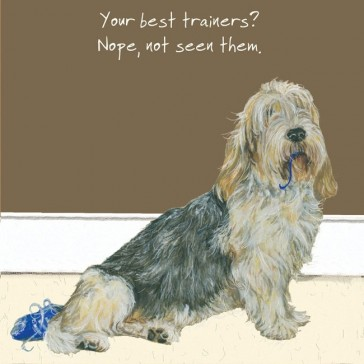 The Little Dog - Trainers Greeting Card