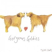 Canvas Print of 'Gorgeous Goldies' by Alex Clark
