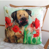 Alex Clark Border & Poppies Cushion