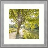 Canalside Sunburst I Framed Print