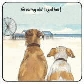 The Little Dog Growing Old Coaster