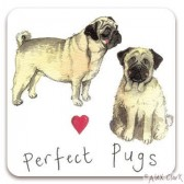 Perfect Pugs Magnet