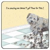 The Little Dog Muddy Floor Coaster