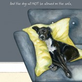 The Little Dog Not Sofa Gift Card