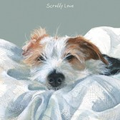 The Little Dog Scruffy Love Gift Card