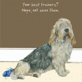 The Little Dog Best Trainers Gift Card