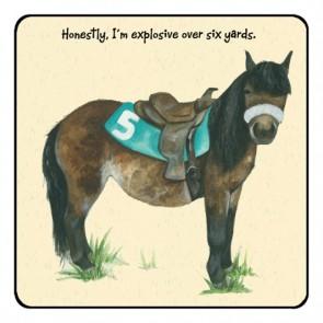 The Little Dog Race Pony Coaster