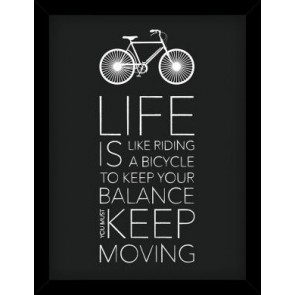 Life is Like Riding a Bicycle Picture