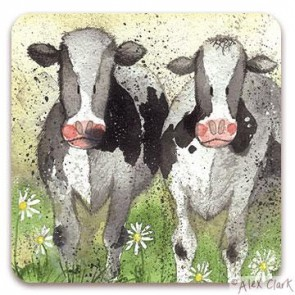 Curious Cows drinks coaster by Alex Clark