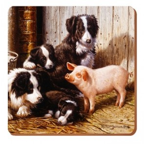 Piggy in the Middle Coasters - Set of 6