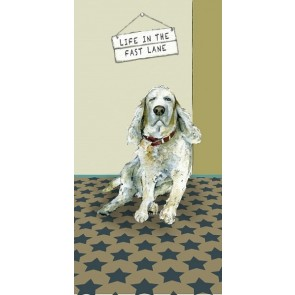 The Little Dog - Fast Lane Greeting Card
