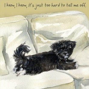 The Little Dog - Havanese Cute Gift Card