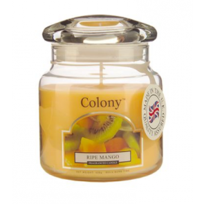 Colony Ripe Mango Candle Jar - Wax Lyrical