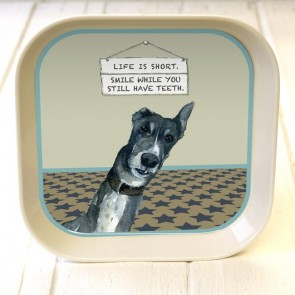 The Little Dog - Smile Tray
