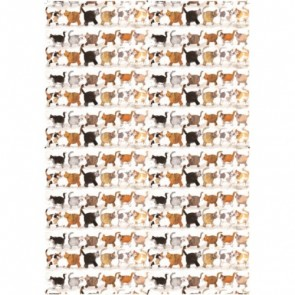 Alex Clark Marvellous Moggies Tea Towel