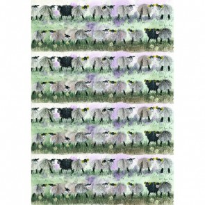 Alex Clark Sheep 100% Cotton Tea Towel