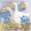 Alex Clark Three Ducks Mini Print