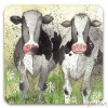 Alex Clark - Curious Cows Coaster