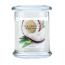 Fresh Coconut Wax Lyrical Candle Jar with Lid