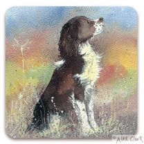 'Jerry' Springer Spaniel drinks coaster by Alex Clak