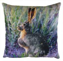 Wild Hare Velvet Cushion - 43cm
