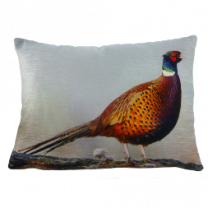 Pheasant Velvet Cushion - 43cm x 33cm