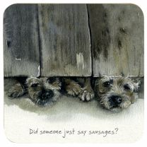 The Little Dog Border Terriers Coaster