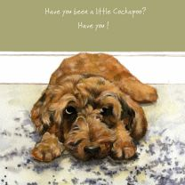 The Little Dog Cockapoo Gift Card