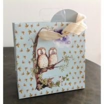 Owls Small Gift Bag by Alex Clark
