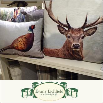 Evans Lichfield Cushions